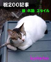 so-net60820-6a4b1[1].jpg