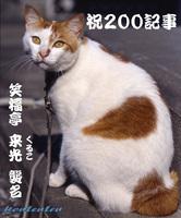 so-net60821-72e13[1].jpg