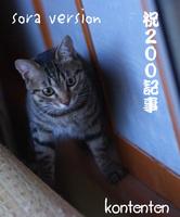 so-net60823-b943a[1].jpg